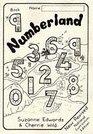 Numberland Workbook 9