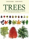 Illustrated Trees of Britain and Northern Europe A Complete Guide to the Trees of  Britain and Northern Europe