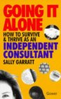 Going It Alone How to Survive and Thrive As an Independent Consultant