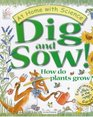 Dig and Sow How Do Plants Grow Experiments in the Garden