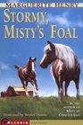Stormy, Misty's Foal (Misty, Bk 3)