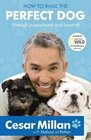 How to Raise the Perfect Dog Through Puppyhood and Beyond Cesar Millan with Melissa Jo Peltier