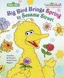 Big Bird Brings Spring to Sesame Street (Sesame Street)