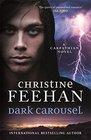 Dark Carousel (Dark, Bk 30)