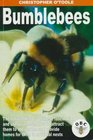 Bumblebees The Natural History of These Fascinating and Useful Insects How to Attract Them to the Garden and Provide Homes for Them in Artificial Nests