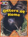 Project X My Home Otters at Home