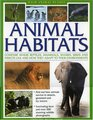 Wild Animal Planet Animal Habitats compare the way reptiles mammals sharks birds and insects livefind out how animals survive and adapt in their  with 200 stunning wildlife photographs