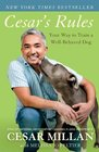 Cesar's Rules Your Way to Train a Well-Behaved Dog