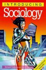 Introducing Sociology 2nd Edition
