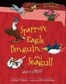 Sparrow Eagle Penguin and Seagull What Is a Bird