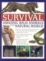 Survival Amazing Wild Animals in the Natural World