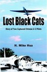 Lost Black Cats