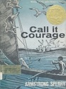 Guide to Call it Courage