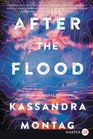 After the Flood A Novel