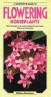 A Gardener's Guide to Flowering Houseplants