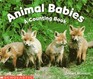 Animal Babies A Counting Book