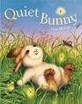 Quiet Bunny