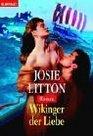Wikinger der Liebe Roman