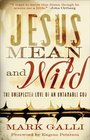 Jesus Mean and Wild The Unexpected Love of an Untamable God