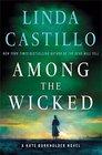 Among the Wicked (Kate Burkholder, Bk 8)