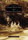 Chimney Rock Park and Hickory Nut Gorge (Images of America: North Carolina)