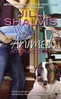 Animal Attraction (Animal Magnetism, Bk 2)