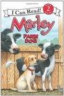 Marley Farm Dog