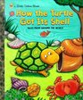 How the Turtle Got Its Shell (Little Golden Books)