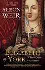 Elizabeth of York A Tudor Queen and Her World