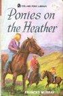 Ponies on the Heather