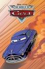 Cars Rally Race