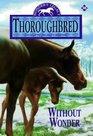 Without Wonder (Thoroughbred, Bk 36)