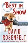 Best in Snow (An Andy Carpenter Novel, 24)