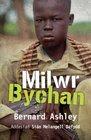 Milwr Bychan