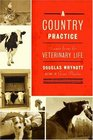 A Country Practice  Scenes from the Veterinary Life