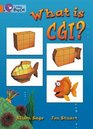 What Is CGI Band 06/Orange