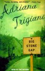 Big Stone Gap (Big Stone Gap, Bk 1) (Audio Cassette) (Abridged)