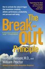 The Breakout Principle  How to Activate the Natural Trigger That Maximizes Creativity Athletic Performance Productivity and Personal Well-Being