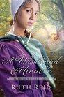 A Woodland Miracle An Amish Wonders Novel