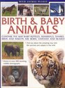 Wild Animal Planet Birth and Baby Animals Compare the way reptiles mammals sharks birds and insects are born find out about the amazing way new life survives and adapts in the wild