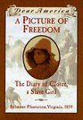 A Picture of Freedom: The Diary of Clotee, a Slave Girl, Belmont Plantation, 1859 (Dear America)