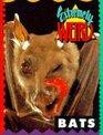 Bats (Extremely Weird)