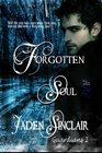 Forgotten Soul Guardians