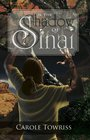 In the Shadow of Sinai