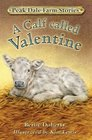 Peak Dale Farm Stories Bk1 A Calf Called Valentine