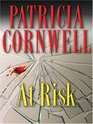 At Risk (Winston Garano, Bk 1) (Large Print)
