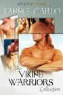 The Viking Warriors Collection