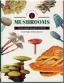 Identifying Mushrooms The New Compact Study Guide and Identifier