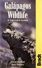 Galapagos Wildlife A Visitor's GUide
