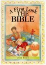 A First Look at the Bible